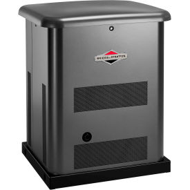 Briggs & Stratton®, 10kW Standby Generator, 100 Amp 16-Circuit Switch, 40451